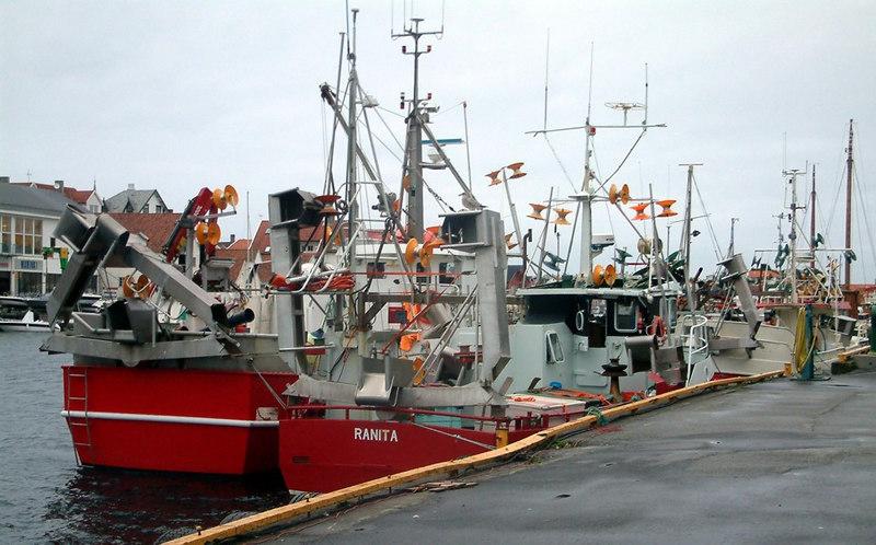 Fishing vessels at Haugesund, Sept 2005