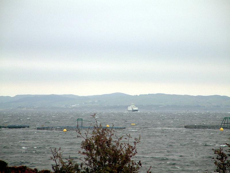 Motor vessel Masfjord approaching Arsvagen, Sept 2005