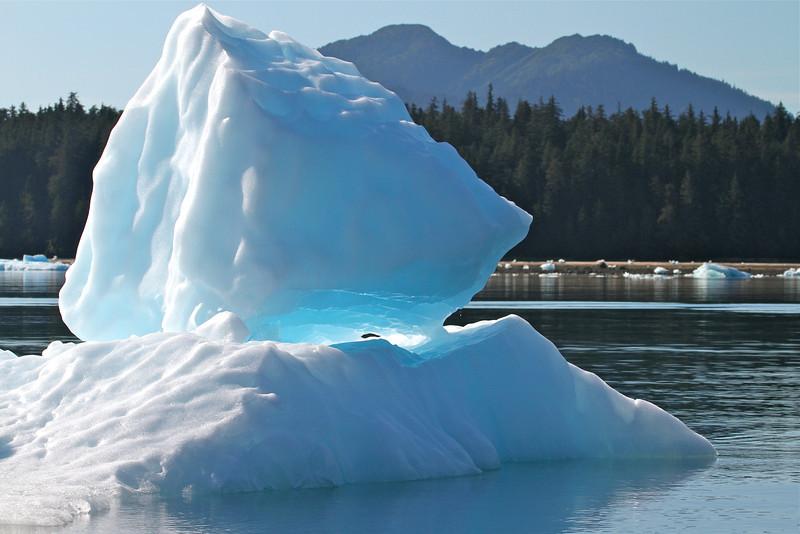 Iceberg balances in LeConte Bay, Alaska