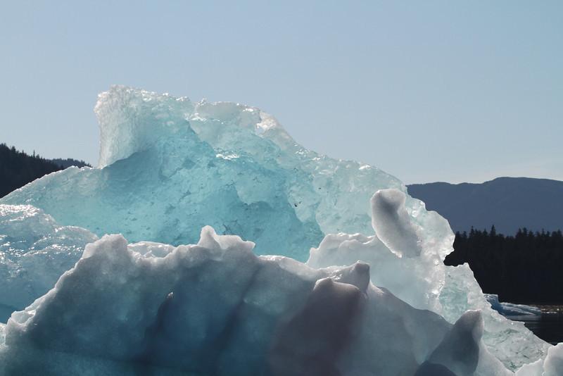 Iceberg floats in LeConte Bay, Alaska