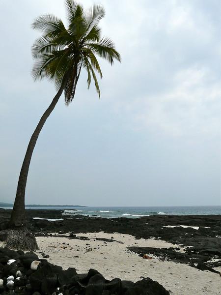beach-big-island-place-refuge