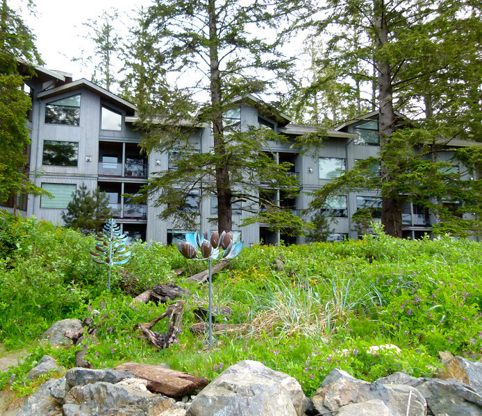 The buildings of Wickaninnish Inn sits amidst trees in a temperate rainforest.