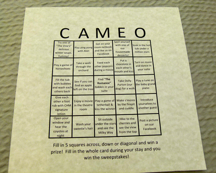 Romantic bingo at Cameo Heights Mansion Bed and Breakfast