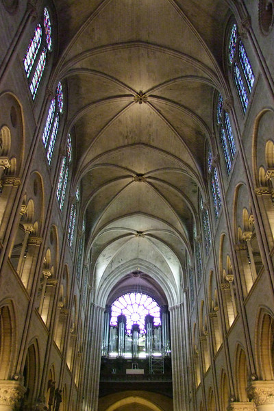 Pipe organ along with walls and ceiling of Notre Dame