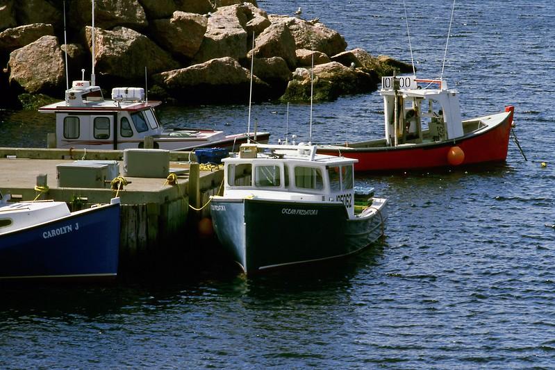 Fishing boats at wharf, Neils Harbour, Cape Breton Island, Nova Scotia, 8/04