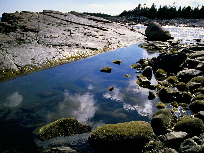 Reflecting pool on the rocky beach at Tor Bay, Nova Scotia, 8/04