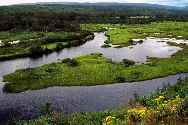 Aspy River near Cape North, Cape Breton Island, Nova Scotia, 8/04