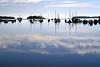 Mahone Bay, Nova Scotia, 8/04