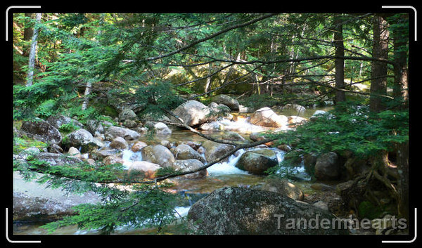 I spent a day with my sister Vicki driving the Kancamangas Highway, NH. (This isn't the highway, just a stream that runs along it.)
