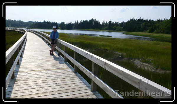 Walking the marsh trail at Rissers Beach.