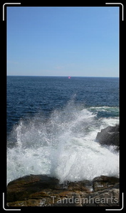 A sailboat rounding Peggy's Cove.