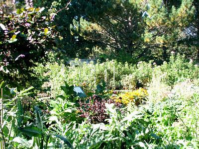 Day 7 - Annapolis Royal - Historic Gardens