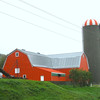 Barn Families are use identifiable colors to mark their buildings