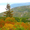 Fall Colors on the Cabot Trail