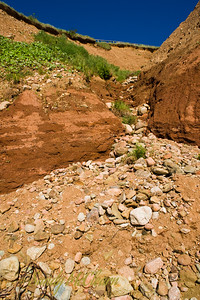 Looking up at the sandstone cliffs from the beach at Five Islands Provincial Park on the Bay of Fundy.