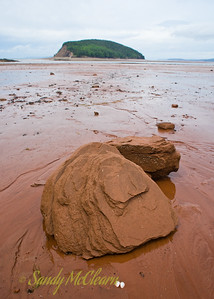 A rock on the beach at Five Islands Provincial Park on the Bay of Fundy at low tide. At high tide, all this is under water.