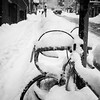 A bike lost in a snow bank on Blowers Street.