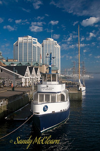 A tour boat is tied up on the Halifax Waterfront during the 2007 Tall Ships festival.