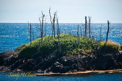 South Foggy Island.