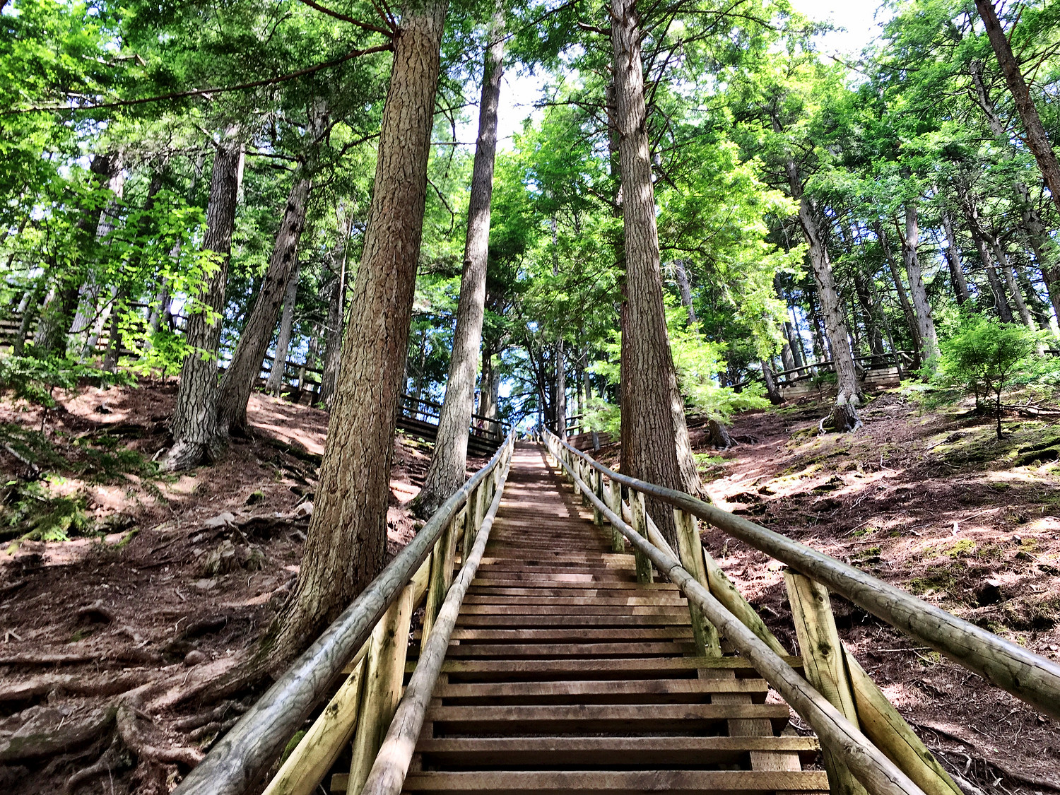 Jacob's Ladder stairs to the top at Victoria Park in Nova Scotia