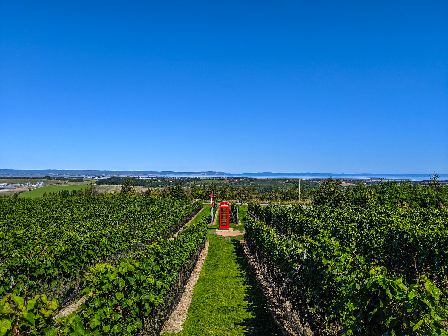 Luckett Vineyards in Wolfville Nova Scotia with its iconic British red phone booth.