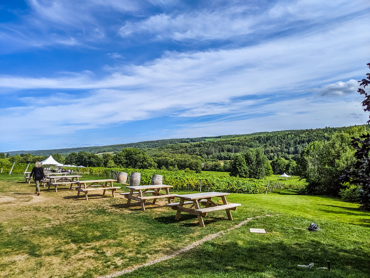 Benjamin Bridge vineyards, it serves a very popular Nova Scotia wine called Nova 7.
