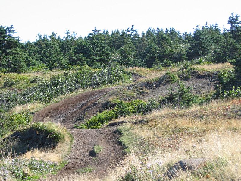 A rolling dirt road on Brier Island, Nova Scotia