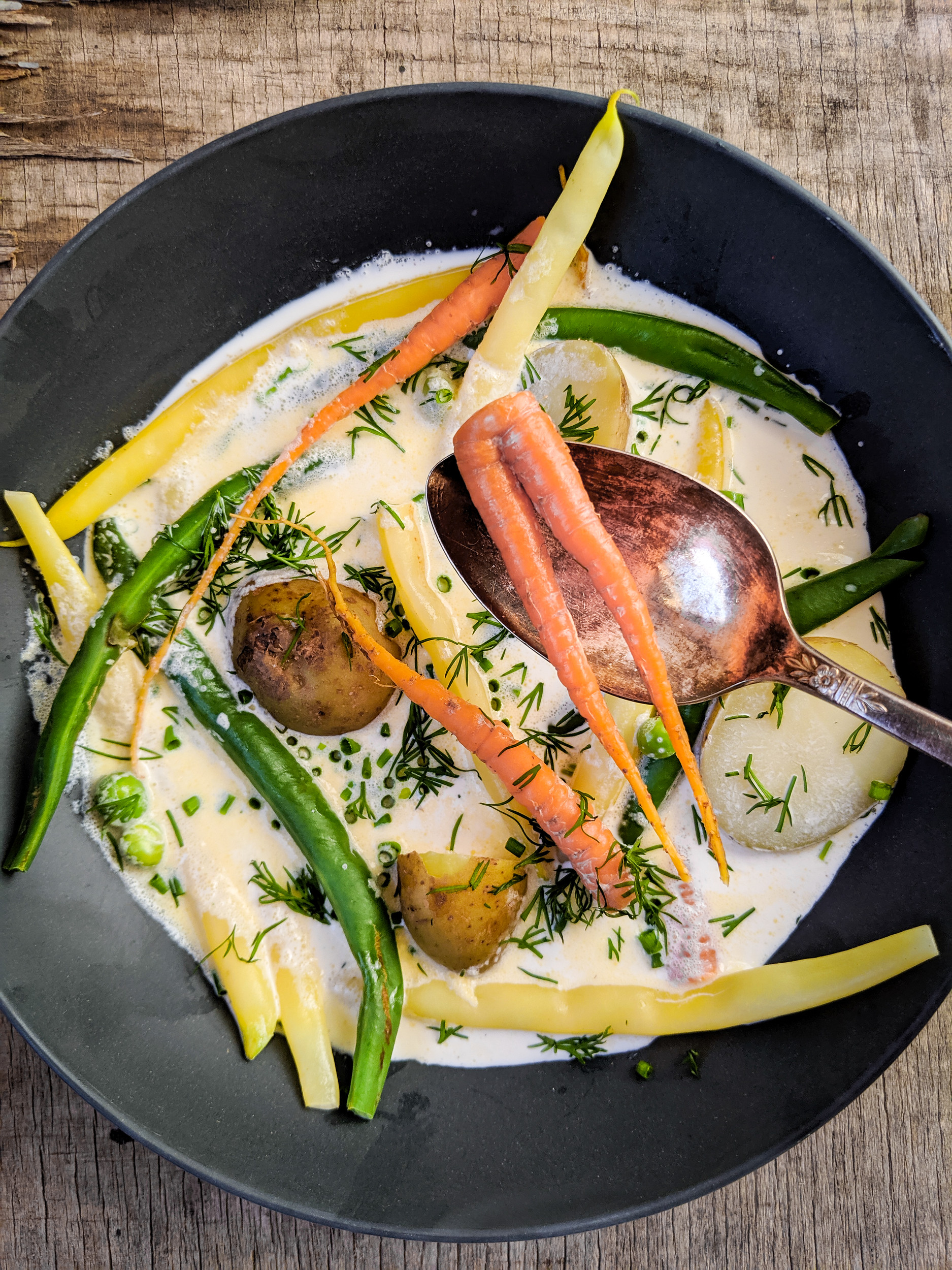 East Coast hodge podge, fresh vegetables in cream.