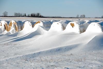 2010-12 North Dakota-2252