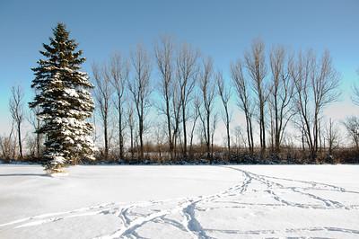 2010-12 North Dakota-2215