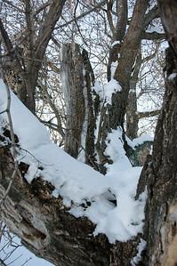 2010-12 North Dakota-2224