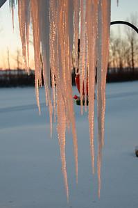 2010-12 North Dakota-2210