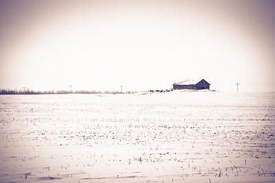 2010-12 North Dakota-2378
