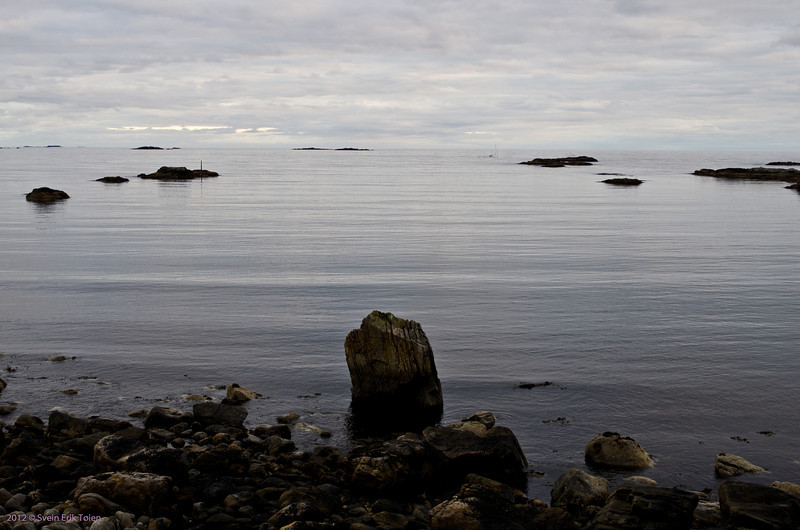 Still evening at the shore
