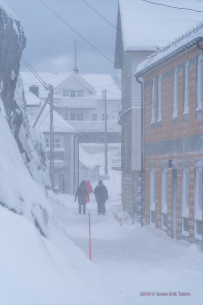 Snowstorm in the street