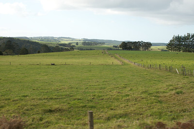 North of Auckland 19
