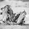 Stump Lake Erie Beach_9685