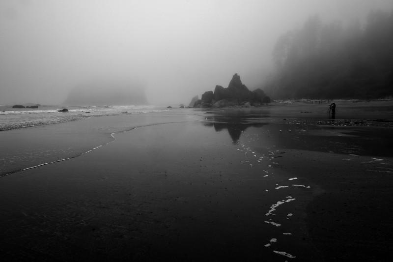 PHOTOGRAPHERS ON THE BEACH