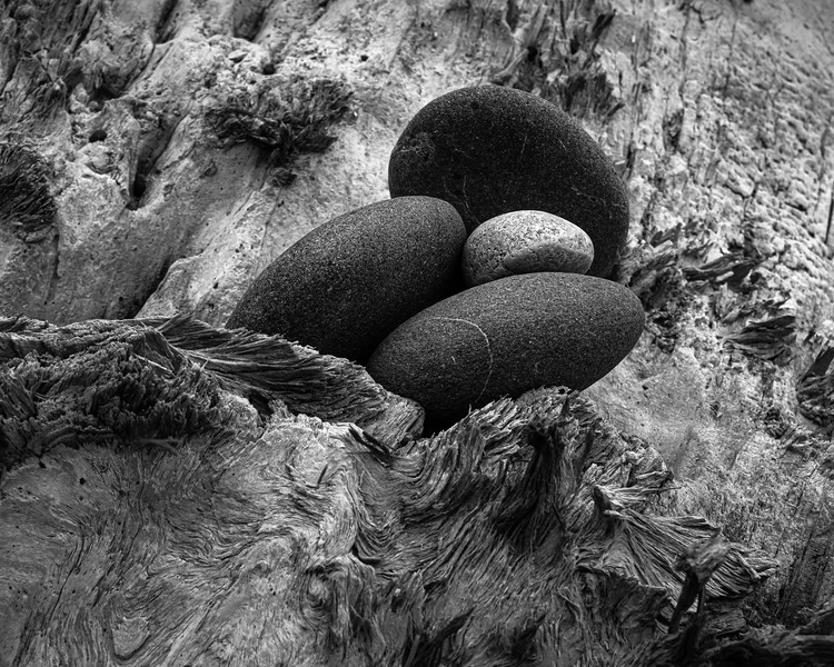 """STONES """"EMBEDDED"""" IN A PEICE OF DRIFTWOOD"""