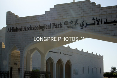 ARCHAEOLOGICAL PARK in Salalah, Oman.  Frankensence was a big part of display here.