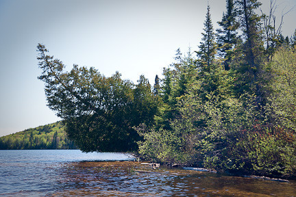 FAR SHORELINE - LAKE OF TWO RIVERS