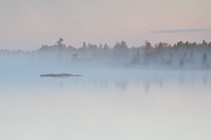 FOGGY MORNING ON LAKE MUSKOKA