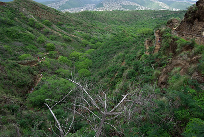 The trail up the inside of Diamond Head Crater.