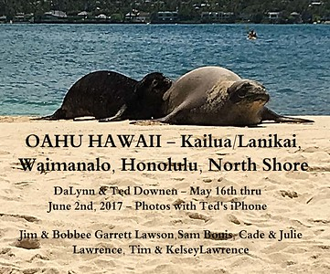 Oahu-May2017-TedsiPhone-HawaiianMonkSeals (w/Videos)