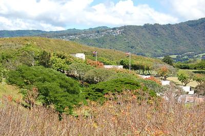 View across Cemetery