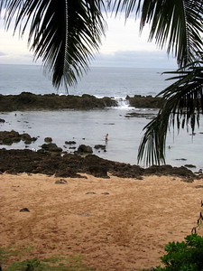 Pupukea tide pool at Shark's Cove, between big surf beaches of Waimea Bay & Bonzai Pipeline.  North Shore, O'ahu.