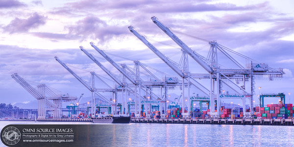 The Port of Oakland Cranes (HDR)