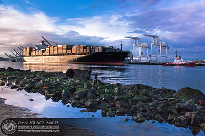 Shipping Lanes - Port of Oakland - March 1, 2014 at 5:20 PM.