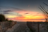 Dawn breaks entering the beach