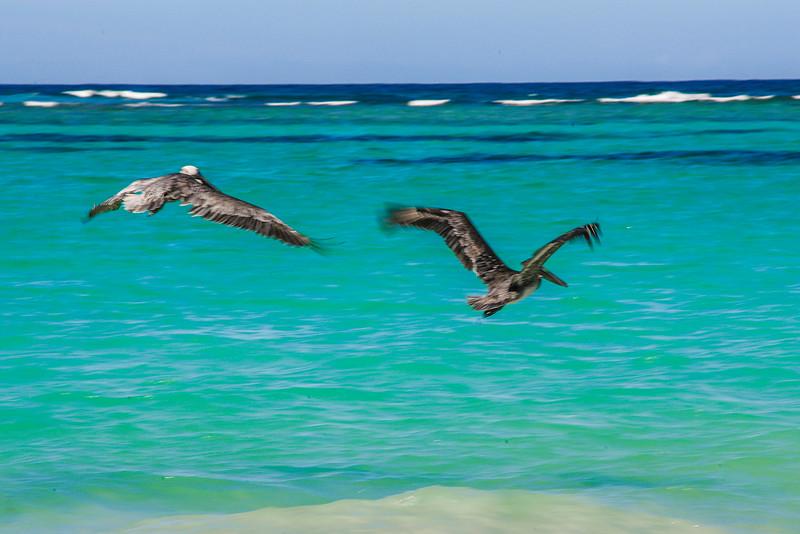 Ocean Blue & Sand
